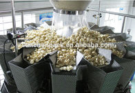 Mushroom Packing Machine , Fungus Packing Machine / Agaric Packing Machine